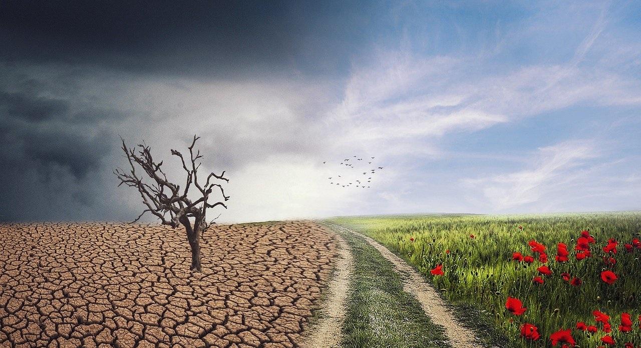 UE 8 : Adaptation au changement climatique (2020-2021)